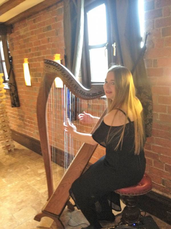 Harpist for drinks reception at Swancar Farm Country House, Nottingham