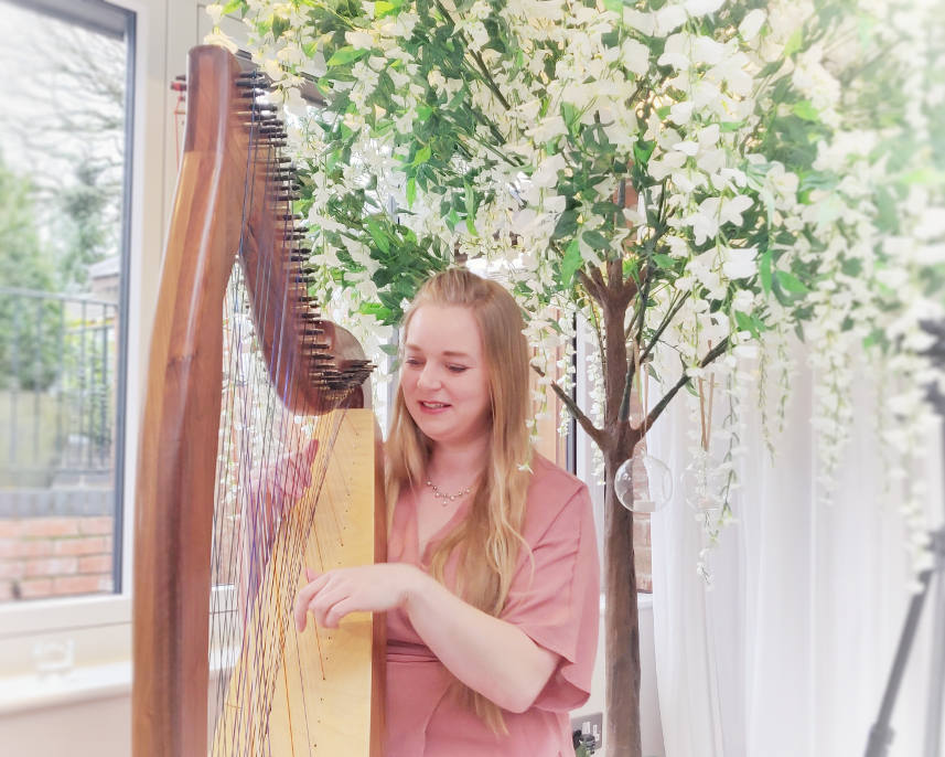 Wedding Harpist at the White Hart, Derbyshire